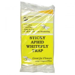 Sticky Aphid/White Fly Traps