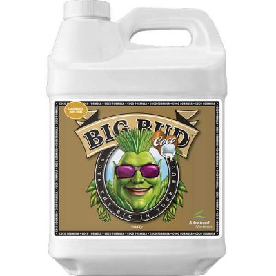 Advanced Big Bud Coco