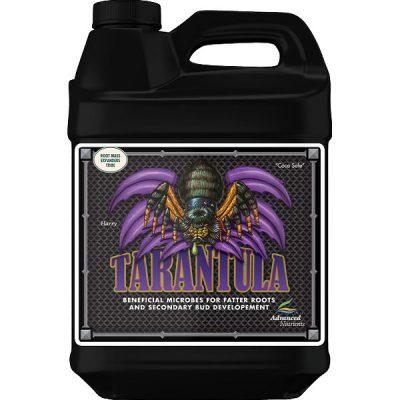 Advanced Tarantula