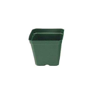 Green Plastic Square Container 3.5""