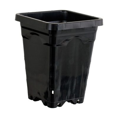 "Active Aqua 5""x5"" Square Black Container"