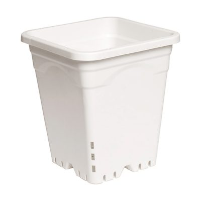 Active Aqua Square White Pot