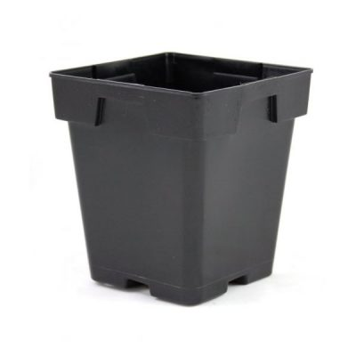 Jumbo Black Plastic Square Container 5.5""