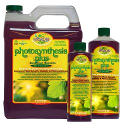 Microbe Life Photosynthesis Plus