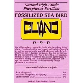 Fossilized Sea Bird Guano